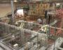 Robots stapelen dozen op pallets, volgens het ideale verpakkingspatroon berekend door de KiSoft Pack Master-software.